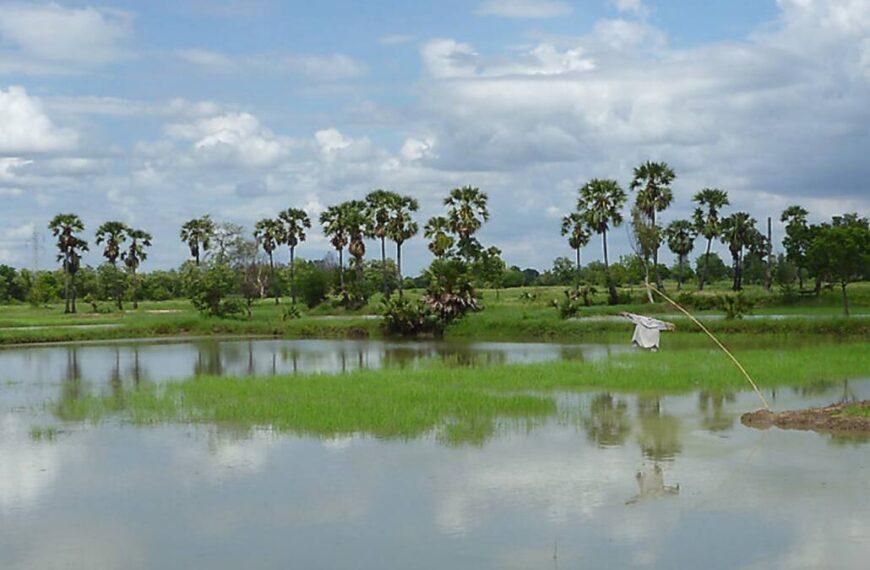 Les provinces de Thailande