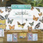 Ferme à papillons de Kuang Si Falls