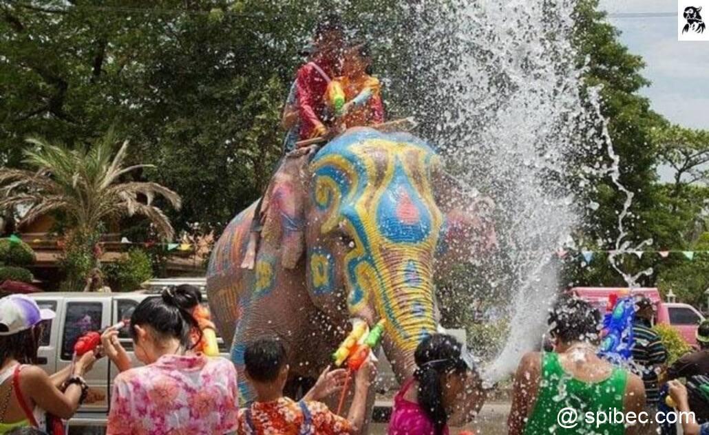Fête de l'eau – festival Songkran en Thaïlande