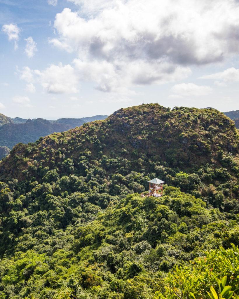 Jusqu'au sommet du pic Ngu Lam.