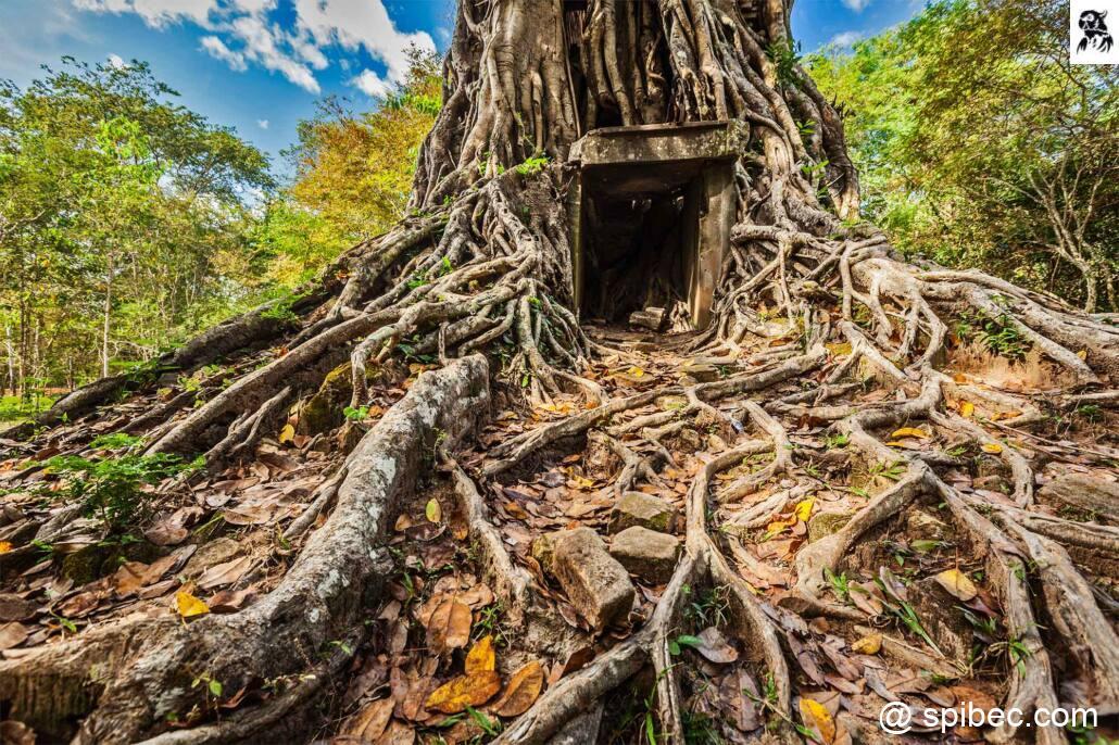 Les temples de Sambor Prei Kuk – Cambodge