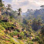 Un peu d'écriture - Indonésie