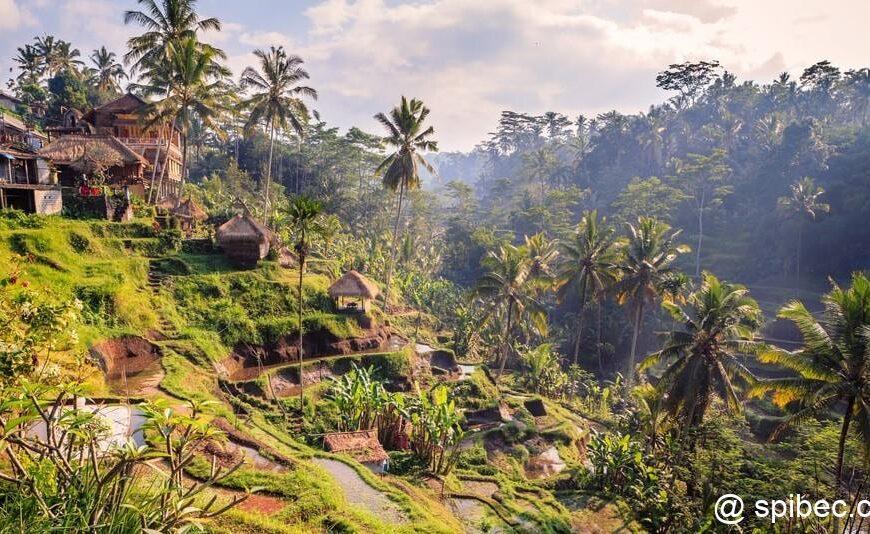 Un peu d'écriture – Indonésie